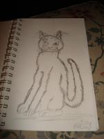 1st kitty drawing by aragornsparrow