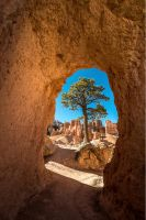 Bryce Canyon, Lock by alierturk