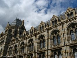 Natural History Museum 1 by missionverdana