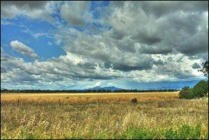 Country Queensland. by Firey-Sunset