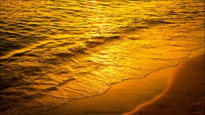 Golden Sea by HarDMuD