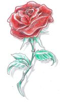 Tattoo Design Rose color by 2Face-Tattoo