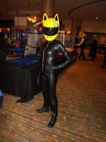 AFest '10: Celty Sturluson by TEi-Has-Pants