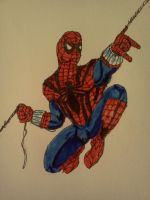 The Sensational Spider-Man by dhbraley