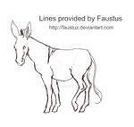 Donkey Lines by Faustuz