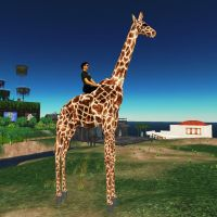 Riding a Giraffe by nftadaedalus