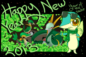 +Happy New Year 2013+ by kiraradaisuki