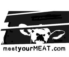 Animal Rights Stencil by xgiveverythingx