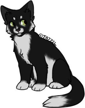 Adoptable Cat Eleven by Nocte-Cornu