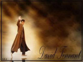 Wall David Tennant by k9-1