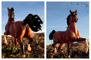 Breyer - Fire Of The Sun by The-Toy-Chest