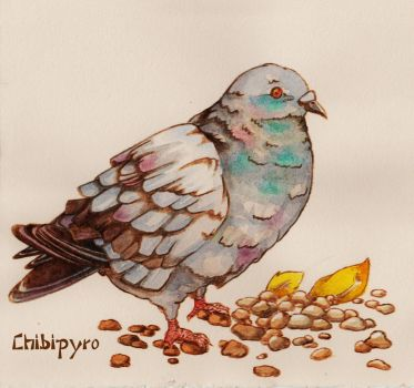 Pyrography Pigeon on Paper by ChibiPyro