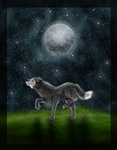 Night Wolf by Forever-Wolfy
