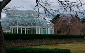 NY Botanical Gardens by StarwaltDesign