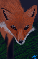 Realalism Practice Red Fox by Freeze-pop88