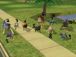 Splash and everyone else on the sims 2! by TheSimsGirl