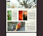 Koy layout homepage1 by mtm01774