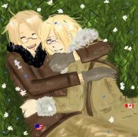 APH: Canada and USA by LexSterling