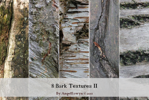 Bark Texture Pack 2 by AngelEowyn