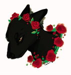 why not black roses by Endber