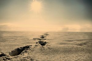 Moonscape by tomsumartin