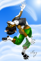 Backflip -fini- by Kaze-Breeze-Katakage