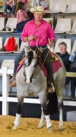 STOCK - 2014 Total Equine Expo-24 by fillyrox