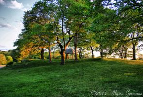 Picnic Area HDR by Shutterbug-94