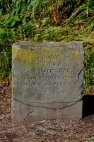 Paddy-1914-18 by lichtie