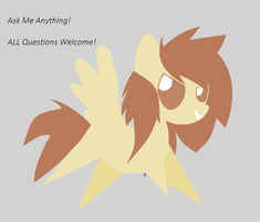 Ask Me Anything! .:Losty:. by SketchingLosty