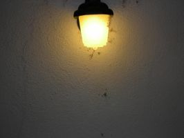 light 02 by Stephasaurus-Stock