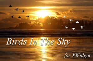 Birds In The Sky for xwidget by jimking