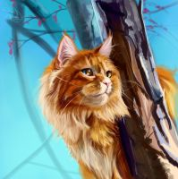 The cat. 80 minutes by SalamanDra-S