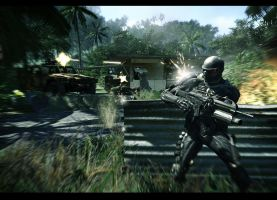 CRYSIS by doublefrank