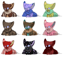 Chinkachu Adopts by FayAdopts