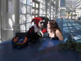 Harley and Ivy on a date by miss-kitty-j