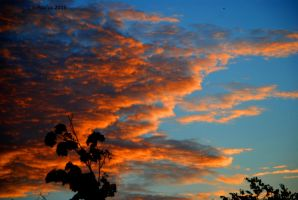 MorningSky 0029 9-10-15 by eyepilot13
