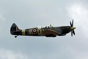 Spitfire at The Victory Show 2013 (5) by masimage