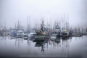 Thomas Basin in the Fog This Morning by Muskeg