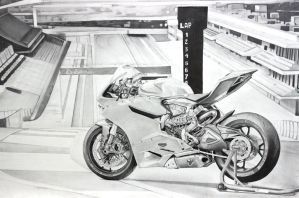 1199 DUCATI PANIGALE by skincandy9