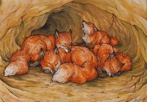 little foxes in their burrow by Victoria-Poloniae