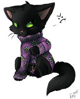 Kitten and sweater by Kay-Wolfy
