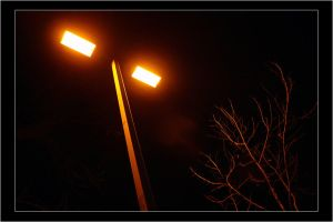 lamppost by yourmetaphor