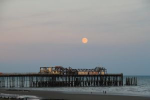 big moon by Tiger--photography