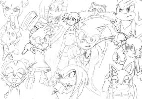 Sonic The Hedgehog - The Sonic X Characters by dewildbunbun