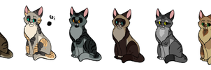Cats that are adopts 1 (CLOSED) by MlSTY