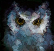 owlTriangulation by Digital-Saffron