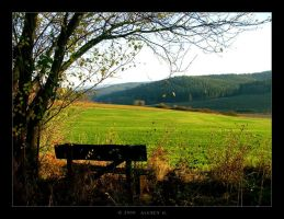Inviting Bench by 5uRt