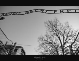 Auschwitz 0972 by JuliaKretsch