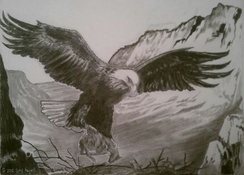 Eagle by Defiant2Death